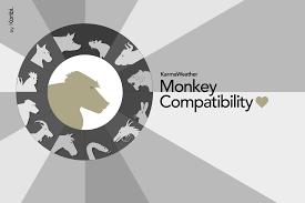 2017 chinese zodiac sign monkey 2017 chinese horoscope year of the monkey s 2017 predictions