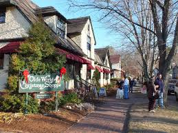 old world christmas shop view asheville bungalows