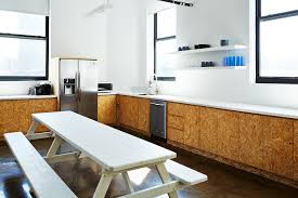 Kitchen Cabinets In Brooklyn Kitchen Of The Week The Stylishly Economical Kitchen Chipboard