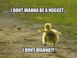 Funny Chicken Memes - chicken meme cut the crap you wanna play chicken image golfian com