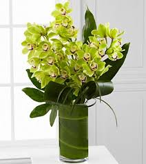 orchid bouquet vision luxury orchid bouquet 8 stems judy s flowers