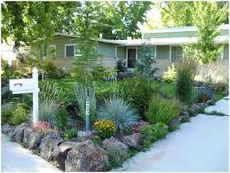 outdoor u0026 garden attractive xeroscape for your garden decor ideas