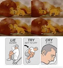 The Lion King Meme - lion feel the lion king know your meme