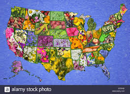 Great America Map by Usa American High Resolution Map From Flowers And Plants Great