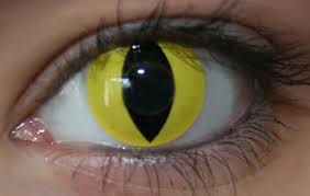 geo crazy lens sf y05 yellow cat eyes halloween color lens