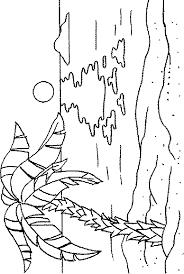 how to draw palm trees palm tree beach colouring pages summer