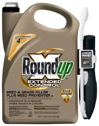 roundup extended control weed u0026 grass killer plus weed preventer