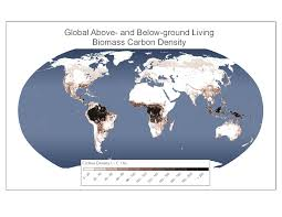 map for new ipcc tier 1 global biomass carbon map for the year 2000