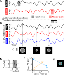 auditory selective attention is enhanced by a task irrelevant