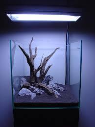 Aquarium Decoration Ideas Freshwater Hardscape Inspiration Aquaria Pinterest Aquascaping