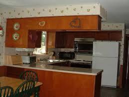 silexkitchen com modular kitchen straight kitchen l shape