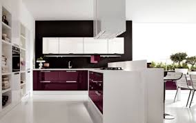 glossy white kitchen cabinets glossy white and glossy kitchen cabinet modern style sleek