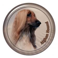 afghan hound dogs 101 all products