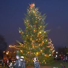 tree lighting on the common stoneham ma chamber of commerce