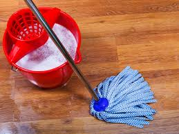 How To Clean The Laminate Floor Quick Home Remedies For Fleas Grandma U0027s Full Guide