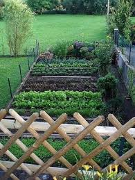 kitchen gardening ideas raised vegetable beds are simple to make and easy to maintain use
