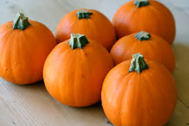 Small Pumpkins The Great Pumpkin Soup Charlie Brown Crunchtime