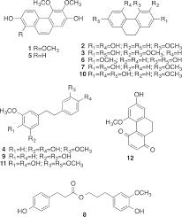 α glucosidase and pancreatic lipase inhibitory activities and