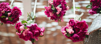 flowers direct the best flower selection from the home of flowers direct from
