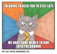 Business Cat Memes - business cat image gallery know your meme