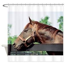 Curtains Seattle Seattle Slew Shower Curtain Seattle
