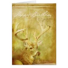 painted deer greeting cards zazzle