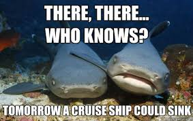 Cruise Ship Memes - there there who knows tomorrow a cruise ship could sink