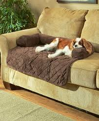 Leather Sofa And Dogs Leather Sofa With Dogs 11204 Intended For Best Architecture 3