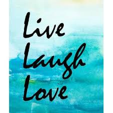 live love laugh live love laugh plant wayfair