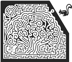 mazes by adrian fisher features content worth