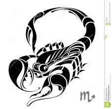 scorpio zodiac vector sign tattoo design stock photo image