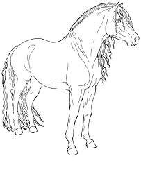 horse jumping coloring pages image information