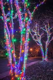 exciting artistic multi color christmas lighting christmas