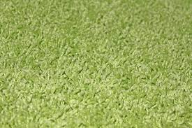 Lime Green Shag Rugs How To Decorate The Room Of With Green Shag Carpet Trends And