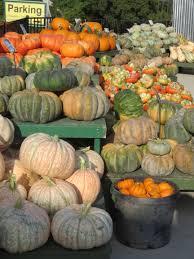 pumpkinpalooza it u0027s time to decorate your home for fall covingtons