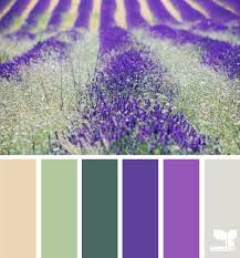 Colors That Match With Purple Best 25 Magenta Bedrooms Ideas On Pinterest Magenta Walls