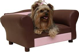 dog couch the best of the best new dog owners