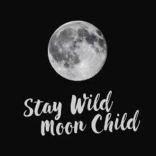 Full Strawberry Moon Stay Wild Square Photograph By Terry Deluco