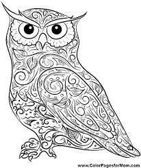 coloring page for adults owl adult owl coloring page getcoloringpages com
