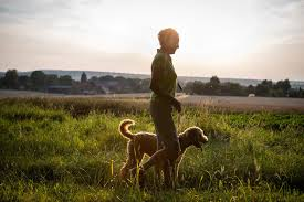 Which State Has The Most Dog Owners Per Capita According To 2016 Stats Owning A Dog Leads To More Walking And Exercise For Older Adults