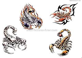 scorpio tattoo designs 5 best tattoos ever