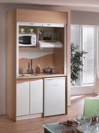 Cabinet For Mini Refrigerator Designer Mini Fridge Foter