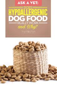 ask a vet does hypoallergenic dog food really work and why