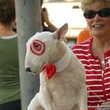 Disney Halloween Costumes Dogs Diy Disney Bolt Halloween Costume Dog Random