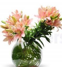 online flowers delivery online flowers delivery kolkata best florist free shipping