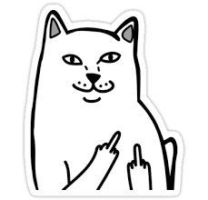 Middle Finger Cat Meme - funny angry middle finger cat meme picture stickers by akkiohs