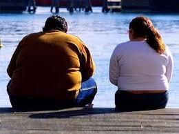 La obesidad(informacion basica)