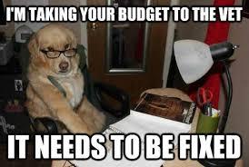 Dog At Vet Meme - financial advice dog advises us on finance obviously memes