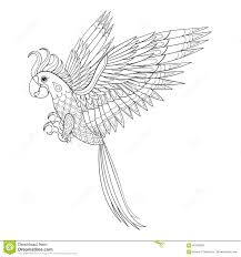 parrot without feathers coloring pages
