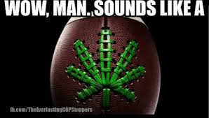 Super Bowl Weed Meme - super bowl weed meme archives the everlasting gop stoppers